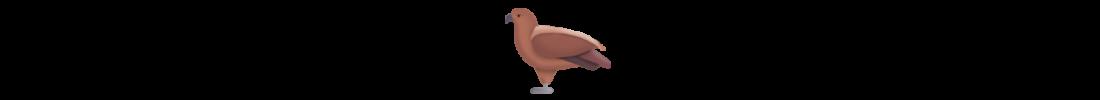 adler_Indianisches_symbol