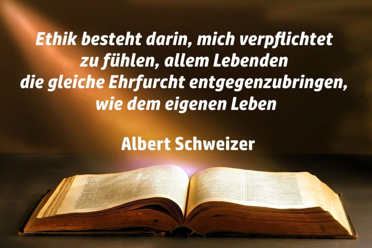 ethik-zu-verpflichten-albert-schweizer