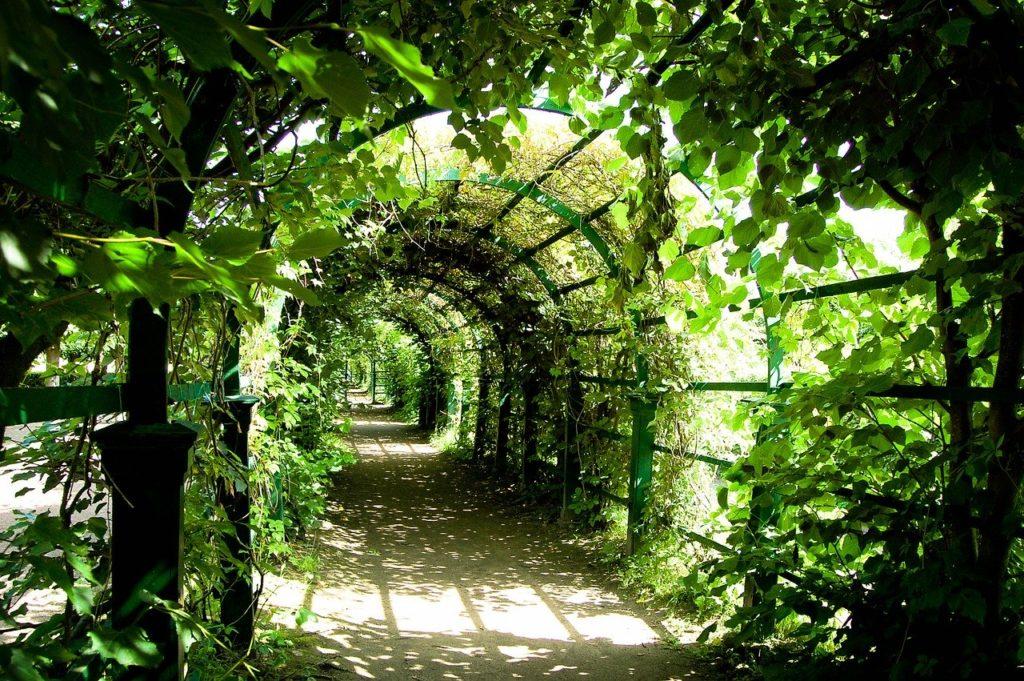 Lucid träumen funktioniert nicht Bogen Garten Traum