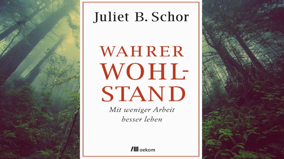 wahrer-wohlstand-juliet-b-schor
