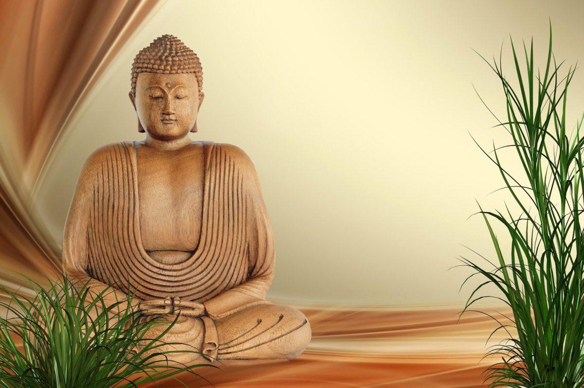 Buddha Code Buddha Statue